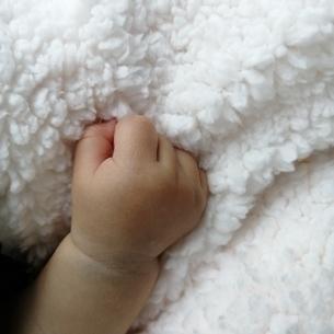 赤ちゃんの手の写真素材 [FYI04490614]
