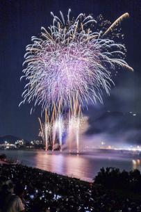 長良川の花火の写真素材 [FYI04490796]