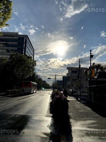 雨上がりの写真素材 [FYI04490995]