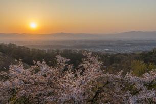 桜と日の出 明神山よりの写真素材 [FYI04491001]