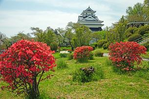 春の月岡公園の写真素材 [FYI04491122]