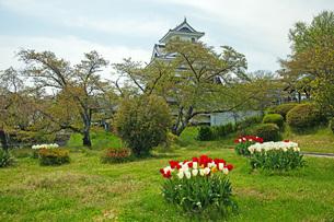春の月岡公園の写真素材 [FYI04491123]