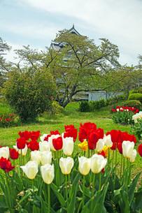 春の月岡公園の写真素材 [FYI04491124]