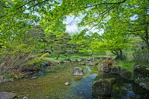 春の県総合運動公園の写真素材 [FYI04491132]