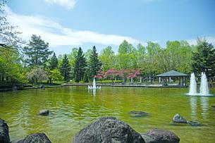 春の県総合運動公園の写真素材 [FYI04491134]