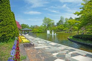 春の県総合運動公園の写真素材 [FYI04491141]