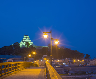 佐賀県 桜 唐津城 (舞鶴公園) 夜景の写真素材 [FYI04491699]