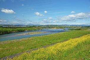 春の寒河江川の写真素材 [FYI04491721]