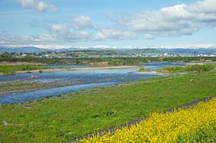 春の寒河江川の写真素材 [FYI04491722]