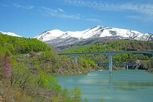 新緑の寒河江川の写真素材 [FYI04491742]