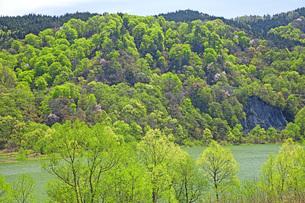 新緑の寒河江川の写真素材 [FYI04491743]