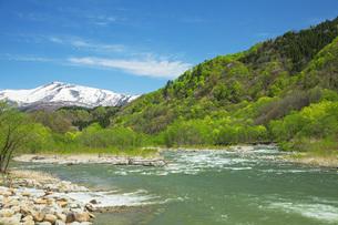 新緑の寒河江川の写真素材 [FYI04491745]