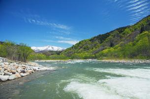 新緑の寒河江川の写真素材 [FYI04491747]