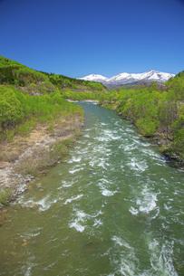 新緑の寒河江川の写真素材 [FYI04491752]