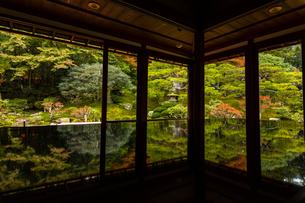 滋賀県 紅葉の旧竹林院の写真素材 [FYI04491814]