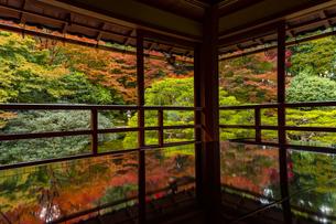 滋賀県 紅葉の旧竹林院の写真素材 [FYI04491831]