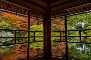 滋賀県 紅葉の旧竹林院の写真素材 [FYI04491832]