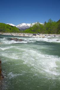 新緑の寒河江川の写真素材 [FYI04492239]