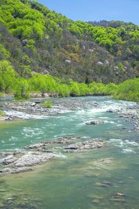 新緑の寒河江川の写真素材 [FYI04492245]