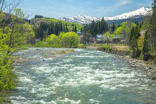 新緑の寒河江川の写真素材 [FYI04492252]