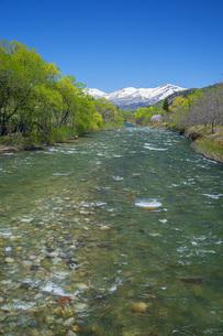 新緑の寒河江川の写真素材 [FYI04492253]