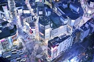 渋谷スクランブル交差点夜景の写真素材 [FYI04492492]