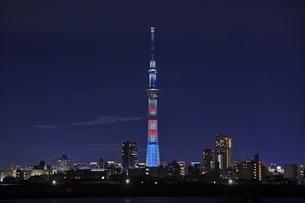 東京スカイツリー夜景の写真素材 [FYI04492533]