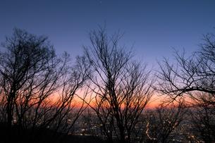 雑木林越しに見る大阪平野の夕暮れ(生駒山より)の写真素材 [FYI04492621]