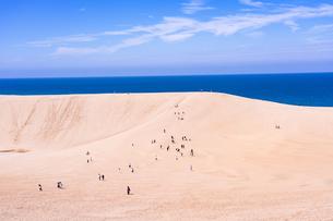 鳥取砂丘の写真素材 [FYI04493267]