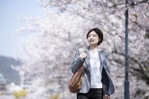 桜とスーツを着た若いビジネスウーマンの写真素材 [FYI04493548]