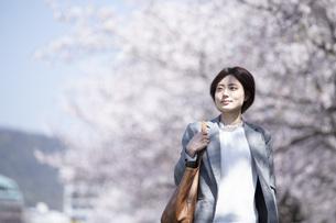 桜とスーツを着た若いビジネスウーマンの写真素材 [FYI04493549]