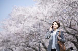 桜とスーツを着た若いビジネスウーマンの写真素材 [FYI04493554]