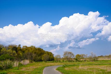 田舎道の写真素材 [FYI04493717]