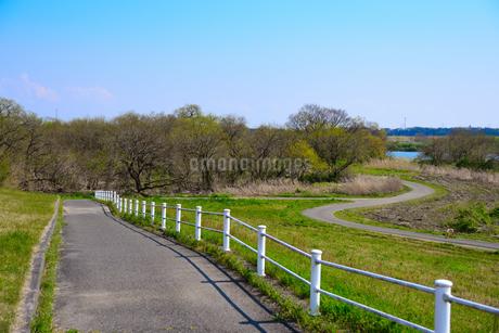 田舎道の写真素材 [FYI04493734]