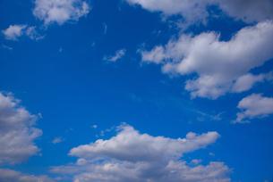 空の写真素材 [FYI04493848]