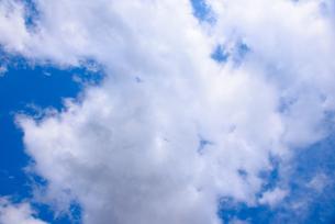 空の写真素材 [FYI04493849]