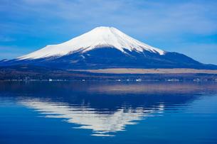 山中湖 湖畔から富士山(逆さ富士)の写真素材 [FYI04494369]