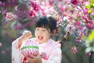 七五三の着物を着て笑っている女の子の写真素材 [FYI04494563]
