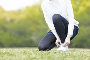 靴紐を結び運動の準備をする若い女性の写真素材 [FYI04494852]