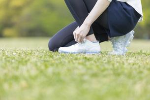 靴紐を結び運動の準備をする若い女性の写真素材 [FYI04494853]
