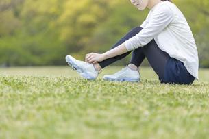 靴紐を結び運動の準備をする若い女性の写真素材 [FYI04494855]