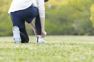 靴紐を結び運動の準備をする若い女性の写真素材 [FYI04494857]