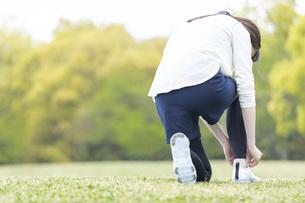 靴紐を結び運動の準備をする若い女性の写真素材 [FYI04494858]