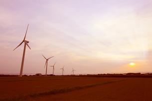 風車の美しい夕景の写真素材 [FYI04495295]