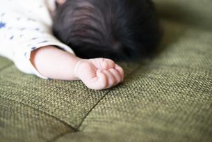 赤ちゃんの握っている手の写真素材 [FYI04495658]