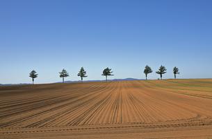 9月 秋のメルヘンの丘の写真素材 [FYI04496041]