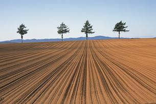 9月 秋のメルヘンの丘の写真素材 [FYI04496046]
