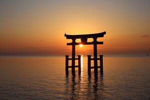 白鬚神社朝日の写真素材 [FYI04496184]