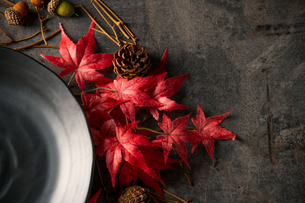 Autumn frame with artificial red maple leaves and empty black plate.の写真素材 [FYI04496981]