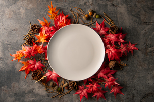 Autumn frame with artificial red maple leaves and empty white plate.の写真素材 [FYI04496982]